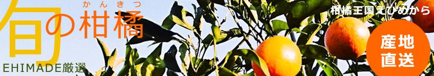 EHIMADE厳選!柑橘王国えひめから農家直送!旬の柑橘たち